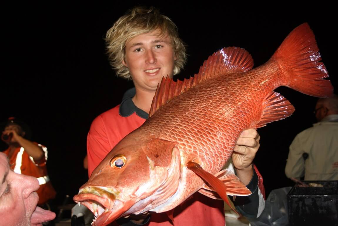 Cairns Reef Fishing Charters During the Wet Season